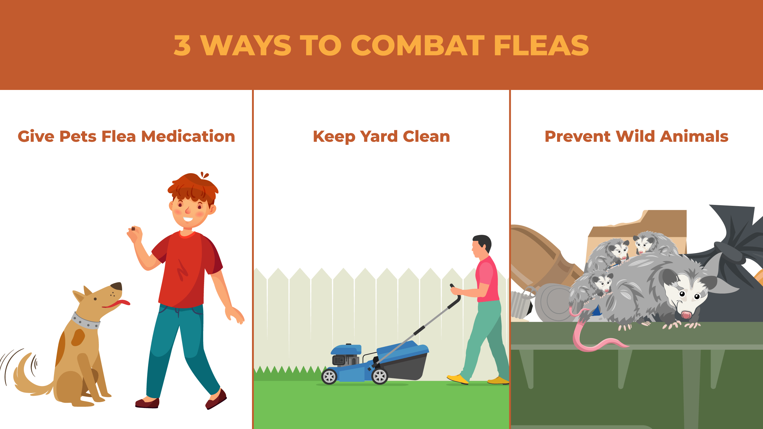 Triptych illustrations of three different ways to combat fleas, including giving your pets anti-flea meds, keeping your lawn clean, and preventing wild animals from coming near your property.