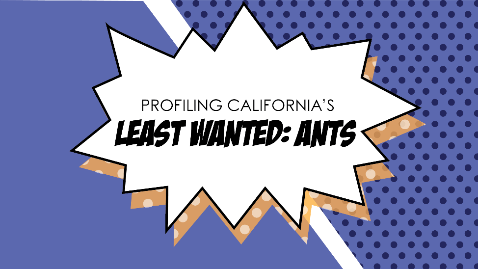 Profiling California's Least Wanted: Ants