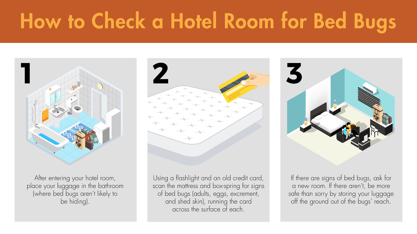 Illustration showing three steps to take when checking a hotel room for bed bugs.