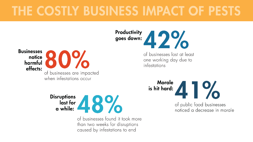 Pests are costly to businesses. 80 percent of businesses are impacted when infestations occur. 42 percent of businesses lost at least one working day due to infestations. 48 percent of businesses found it took more than two weeks for disruptions caused by infestations to end. 41 percent of public food businesses noticed a decrease in morale.